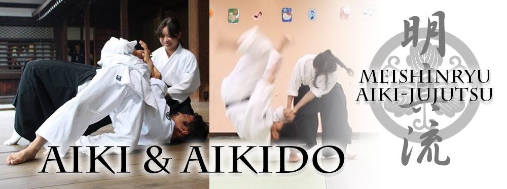 Meishinryu Aiki-Jujutsu : Tenshokai